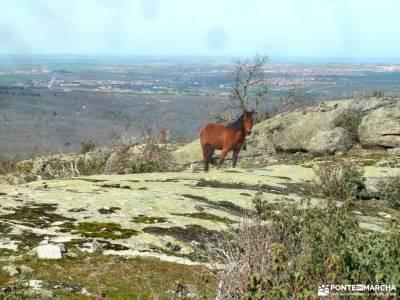 La Chorranca-Cueva Monje-Cerro del Puerco;madrid sierra norte granada alpujarras